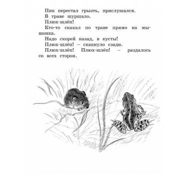 Лесные сказки и рассказы