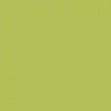 Маркер Marvy Le Plume YG645 MOSS GREEN