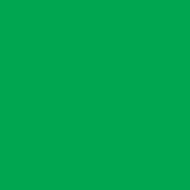 Маркер Marvy Le Plume G656 FRESH GREEN