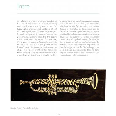 Words Into Shapes. The Graphic Art Of Calligram