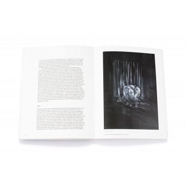 Francis Bacon: Shadows