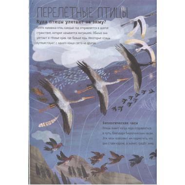 Большая книга птиц
